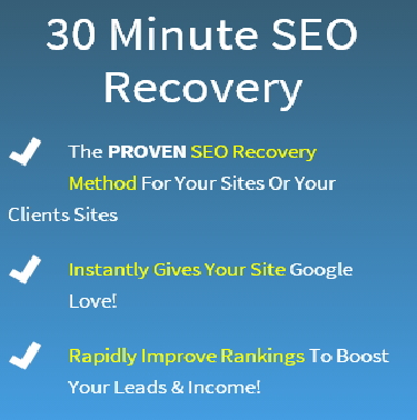 30 minute seo penalty recovery